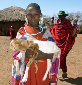 Maasai Girl - with a baby sheep on her arms